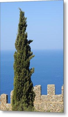 Blue Ocean And Sky Green Tree - Serene And Calming  Metal Print by Matthias Hauser