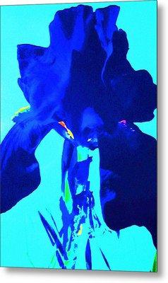 Blue View Metal Print by Todd Sherlock