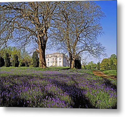 Bluebells In The Pleasure Grounds, Emo Metal Print by The Irish Image Collection