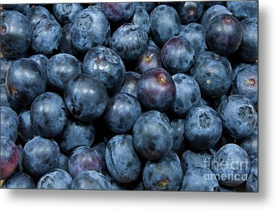 Blueberries Metal Print by Michael Waters