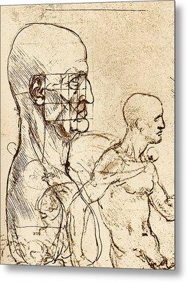 Body Anatomy Metal Print by Sheila Terry