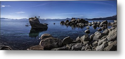 Bonsai Rock Lake Tahoe Metal Print by Brad Scott