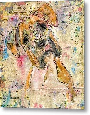 Boxer Babe Metal Print by Marilyn Sholin