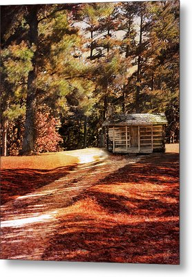 Brewer Cabin Metal Print by Jai Johnson