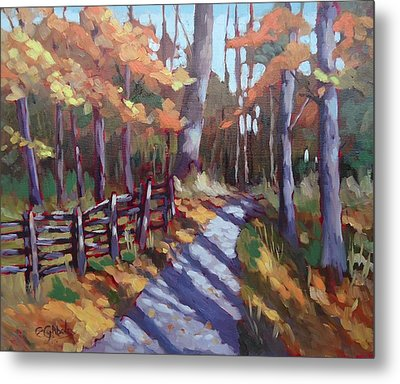 Bruce's Mills Fall Colors Metal Print by Edward Abela