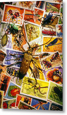 Bugs On Postage Stamps Metal Print by Garry Gay