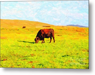 Bull Grazing In The Field Metal Print by Wingsdomain Art and Photography