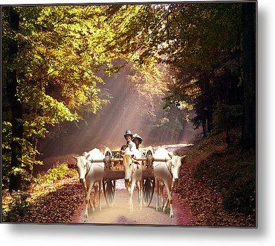 Bulls Ride Metal Print by E  Kraizberg