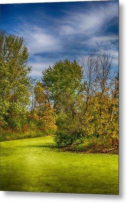 Busch Wildlife Swampy Autumn Metal Print by Bill Tiepelman