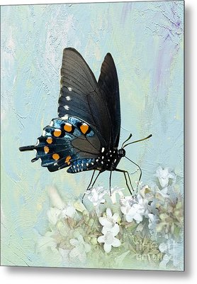 Butterfly Candy Metal Print by Betty LaRue