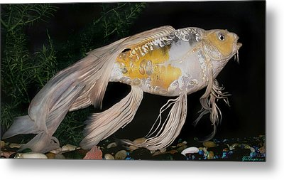 Butterfly Koi Named Flower Metal Print by Janna Morrison