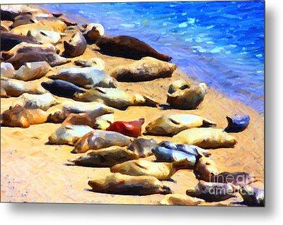 California Sunbathers . Harbor Seals Metal Print by Wingsdomain Art and Photography