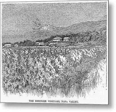 California: Vineyard, 1889 Metal Print by Granger