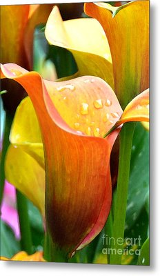 Calla Painting Metal Print by Pravine Chester