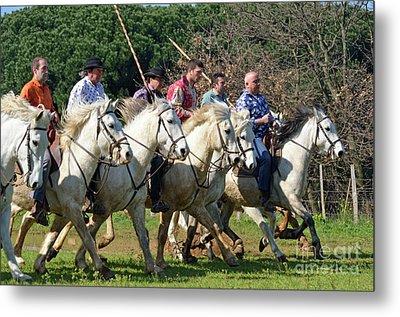 Camargue Cowboys Riding Horses Metal Print by Sami Sarkis