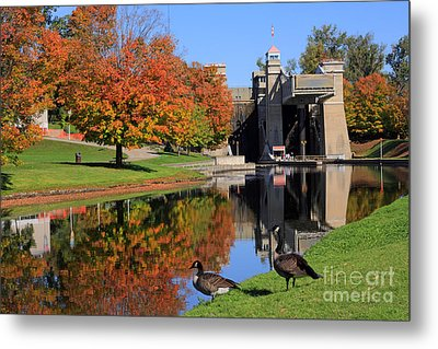Canada Geese At Lift Lock Metal Print by Charline Xia