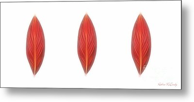 Canna Leaves Metal Print by Kathie McCurdy