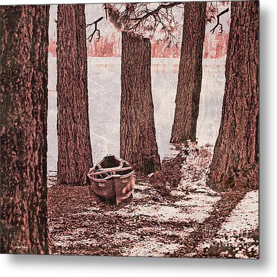 Canoe In The Woods Metal Print by Cheryl Young