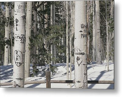Carved Initials In The Metal Print by Stacy Gold