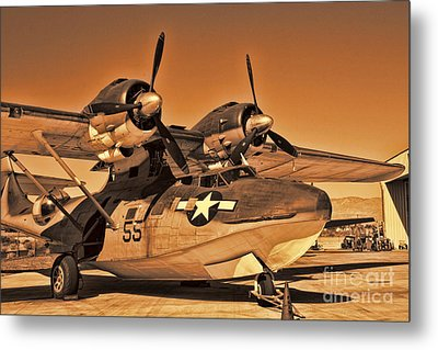 Catalina Metal Print by Tommy Anderson