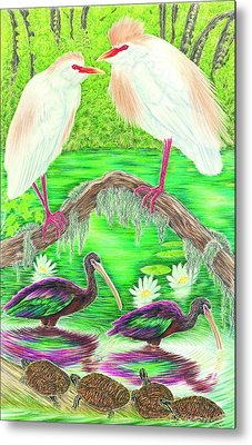 Cattle Egrets With Ibis Metal Print by Tim McCarthy