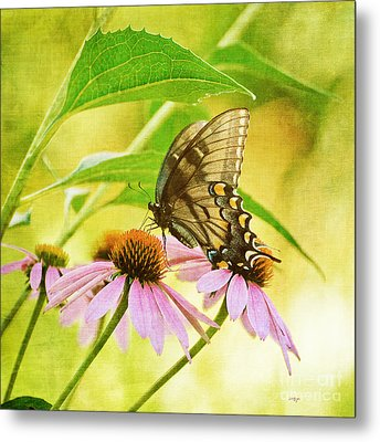 Child Of Sun And Summer Metal Print by Lois Bryan