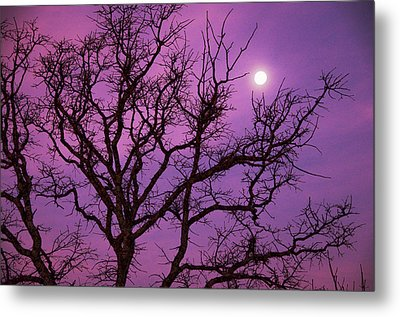 Christmas Morning Moon Metal Print by Jeff R Clow