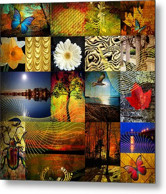 Collage Of Colors Metal Print by Mark Ashkenazi