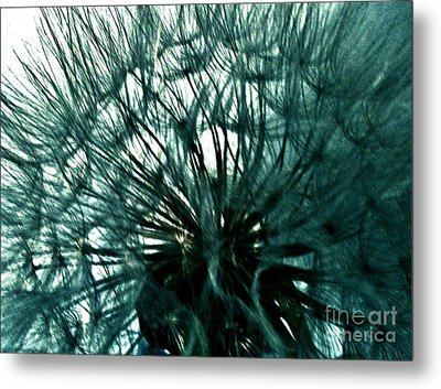 Colored Pod Flower Abstract Metal Print by Marsha Heiken