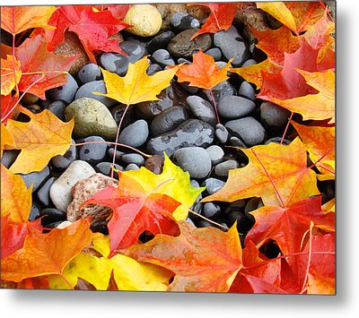 Colorful Autumn Leaves Prints Rocks Metal Print by Baslee Troutman