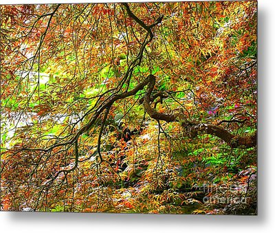 Colorful Maple Leaves Metal Print by Carol Groenen