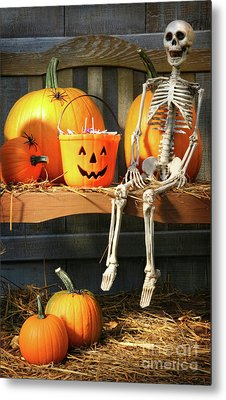 Colorful Pumpkins And Skeleton On Bench Metal Print by Sandra Cunningham