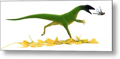 Compsognathus Metal Print by Jane Burton and Warren Photographic and Photo Researchers
