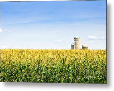 Corn Field With Silos Metal Print by Elena Elisseeva