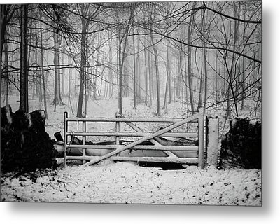 Cotswolds Winter Metal Print by Andrew Lockie