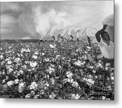 Cotton Field Metal Print by Belinda Threeths