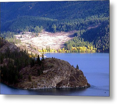 Country Color 4 Metal Print by Will Borden