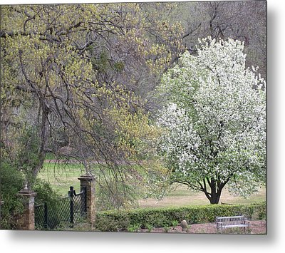Country Elegance Metal Print by Shawn Hughes