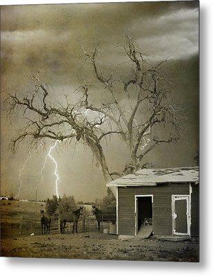 Country Horses Lightning Storm Ne Boulder Co 66v Bw Art Metal Print by James BO  Insogna