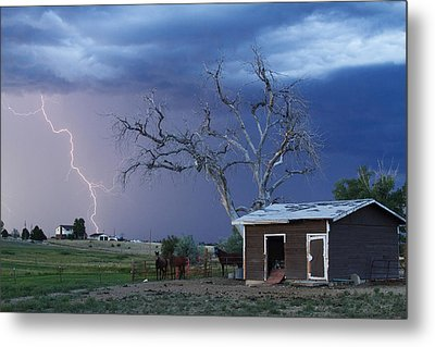 Country Horses Lightning Storm Ne Boulder County Co  63 Metal Print by James BO  Insogna