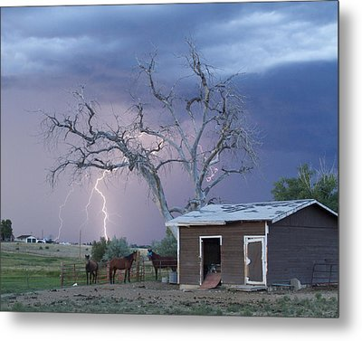 Country Horses Lightning Storm Ne Boulder County Co  Crop Metal Print by James BO  Insogna
