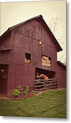 Country Living Metal Print by De Beall