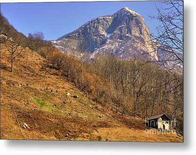 Cowhouse And Snow-capped Mountain Metal Print by Mats Silvan