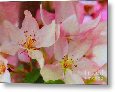 Crabapple Floral Paint Metal Print by Donna Munro