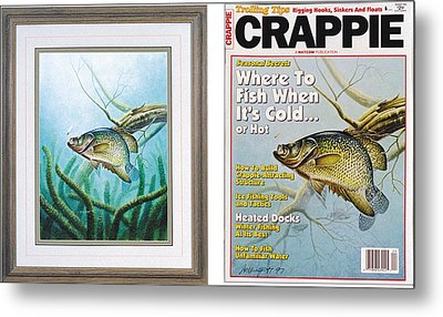 Crappie And Coon Tail Cover Metal Print by JQ Licensing