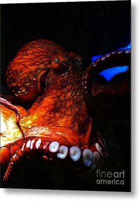 Creatures Of The Deep - The Octopus - V6 - Orange Metal Print by Wingsdomain Art and Photography