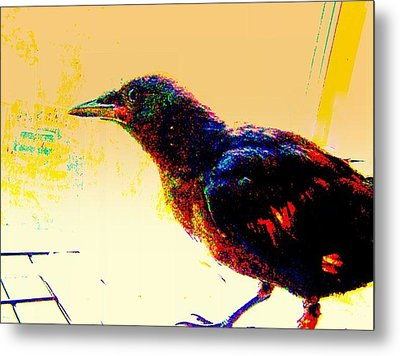 Crow Walk Metal Print by YoMamaBird Rhonda