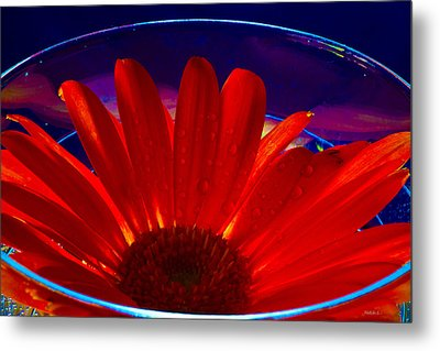 Cup O Gerber Metal Print by Mitch Shindelbower
