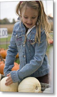 Cute Little Girl Picking A Pumpkin Metal Print by Christopher Purcell