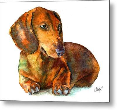 Dachshund Puppy Metal Print by Christy  Freeman